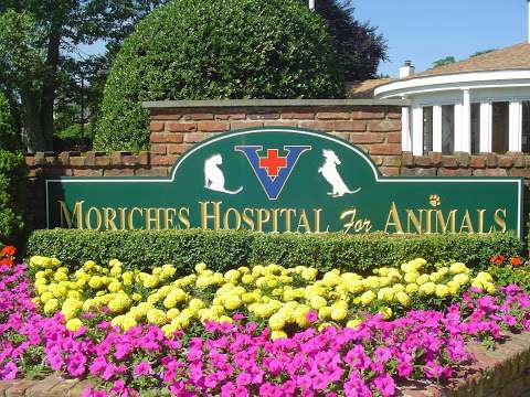 Jobs in The Moriches Hospital For Animals - reviews